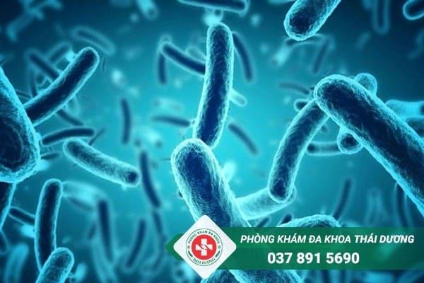 Vi khuẩn gây viêm phổi ở trẻ sơ sinh