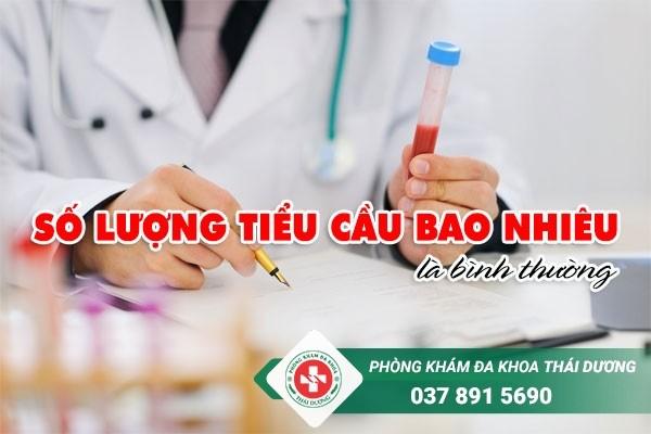 Tiểu cầu đóng vai trò quan trọng trong quá trình đông máu