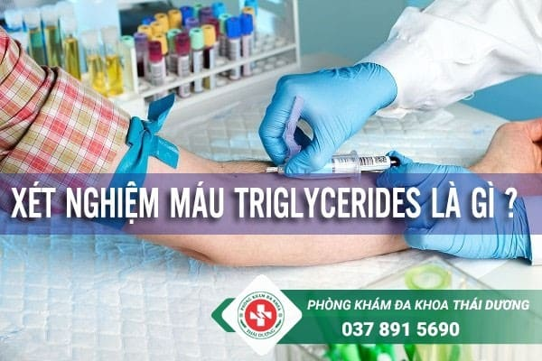 Triglyceride là một dạng chất béo mà cơ thể vẫn tiêu thụ mỗi ngày
